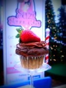 Suzi Skinny Cakes