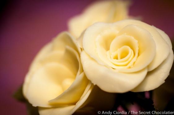 White chocolate roses The Secret Chocolatier